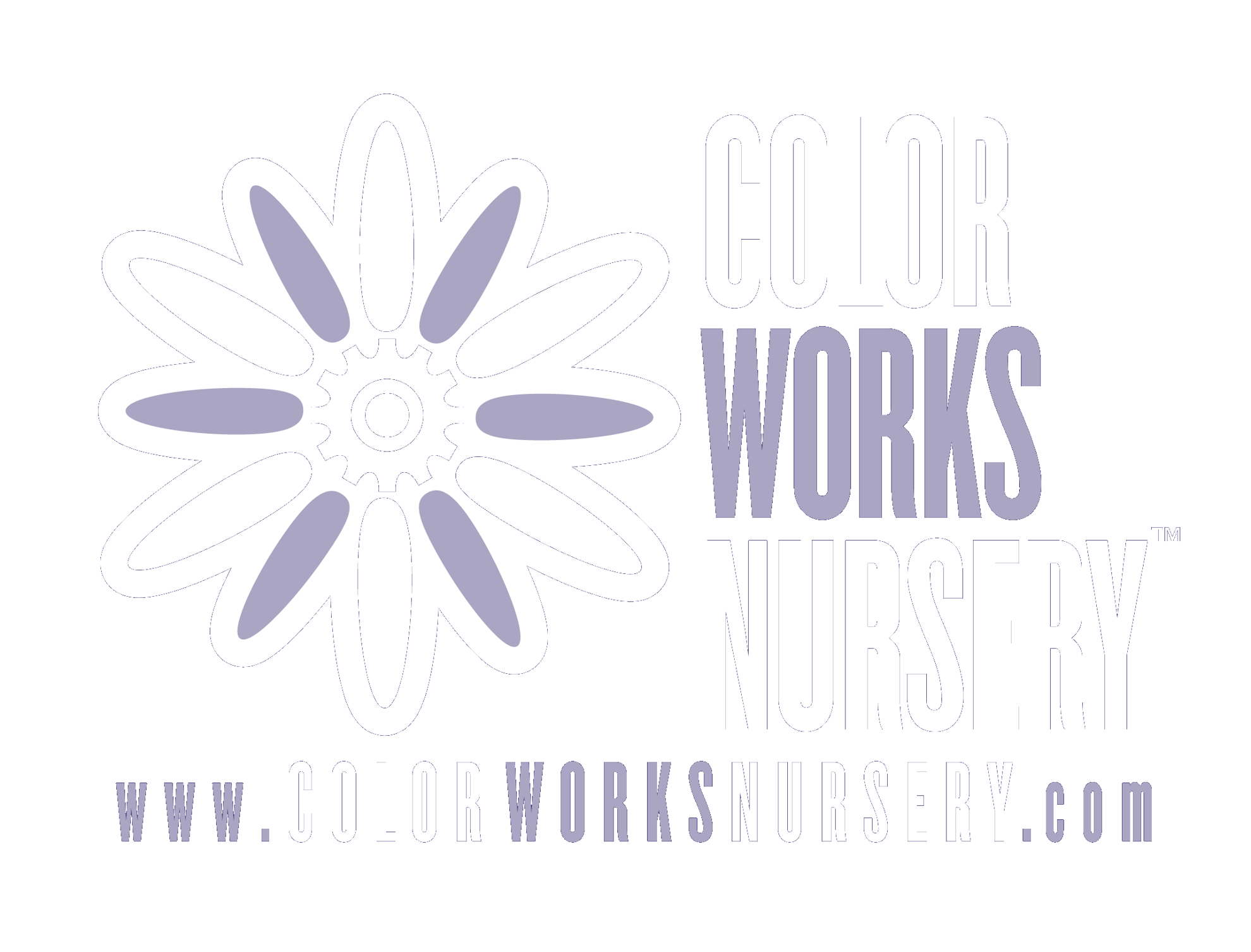 Color Works Nursery